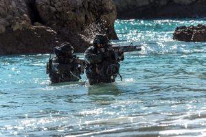 DAE, revista de marinha, fuzileiros, seals, ações especiais, forças especiais, comandos, marinha portuguesa, ar-15