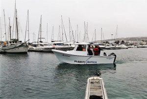 pesca, pesca desportiva, pesca profissional, planus nautica, nazaré, fibra de vidro, mercury
