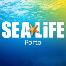 Entrada gratuita para professores em agosto no SEA LIFE Porto 37