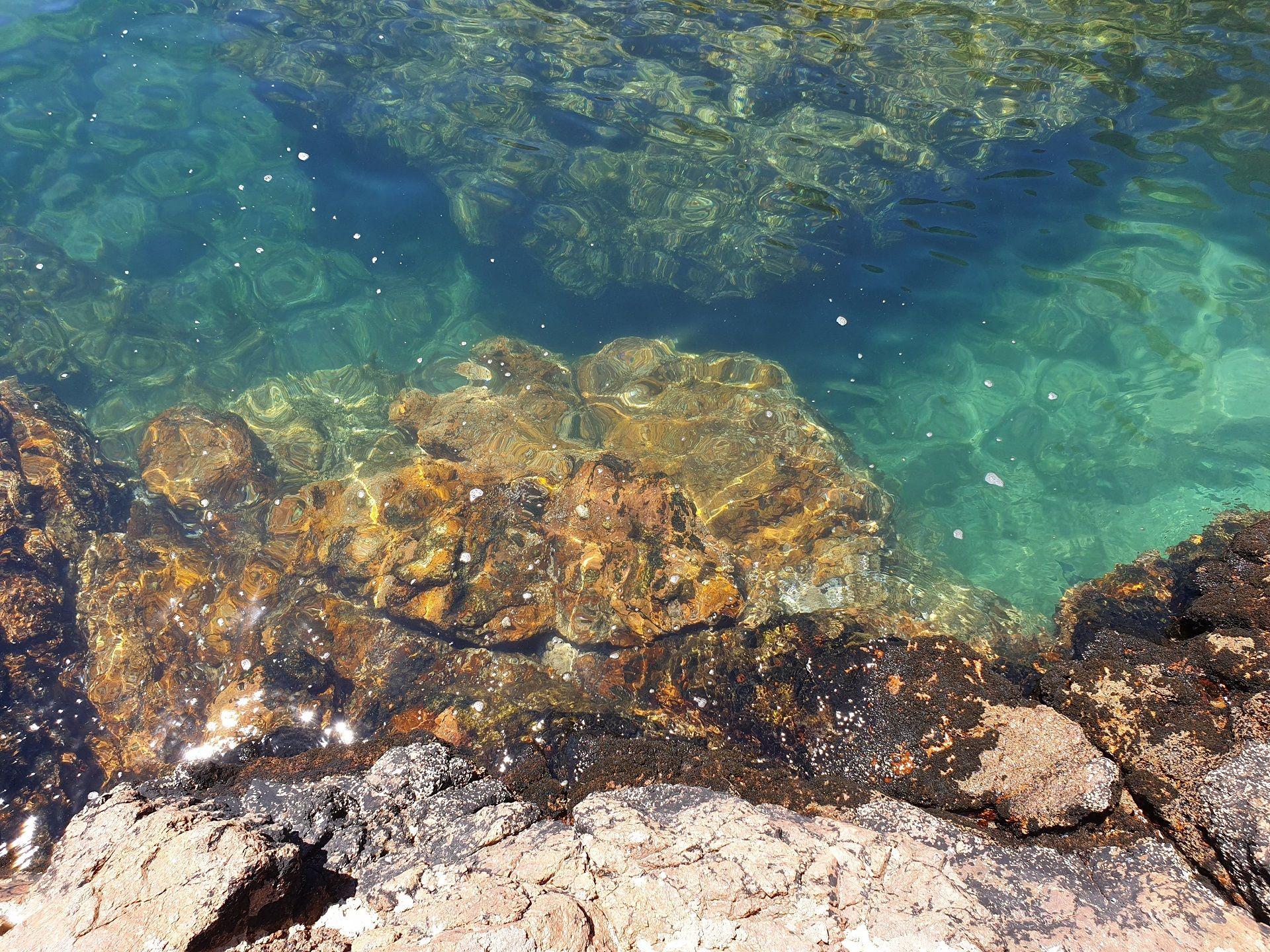 Investigação em Aveiro combate a contaminação das águas