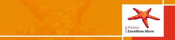 Prémios Excellens Mare 2020 - Webinar ao vivo, 25 julho 16
