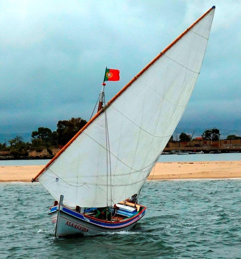 A catraia a navegar à vela vista de proa (imagem Eng. Rui Nunes)