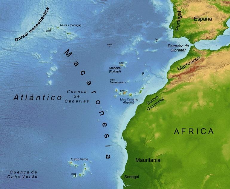 A Macaronésia localiza-se no Oceano Atlântico, a leste da crista medio-atlântica.