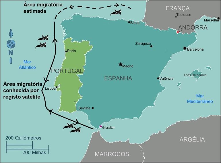Área de migração das orcas residentes na costa atlântica da Península Ibérica