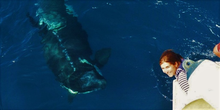 Ruth Esteban, durante os seus trabalhos no mar, com o tema do seu doutoramento, uma orca (Orcinus orca) na costa de Portugal (imagem CIRCE)