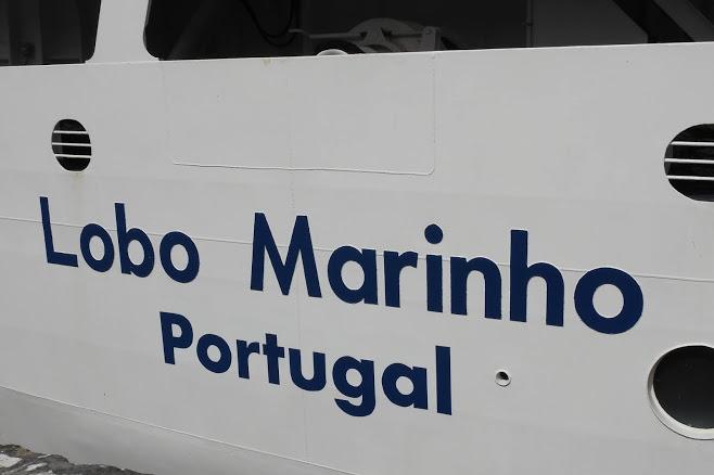 À chegada ao Funchal o navio ostentava o nome de porto de registo Portugal, em substituição de Madeira(imagem Sérgio Ferreira CEN)