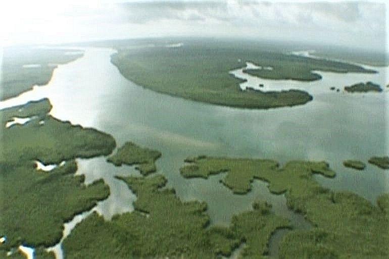 Vista aérea da foz do rio Cacheu (imagem de gbissau.org)