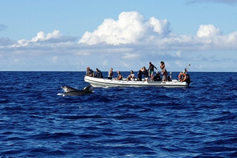 A Escola de Mar dos Açores vai beneficiar a indústria das atividade marítimo-turísticas (imagem João Gonçalves)