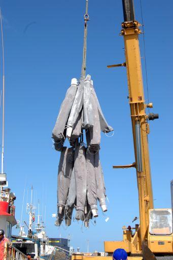 Troncos de espadarte congelados movimentados por uma grua portuária (imagem ENAPOR)
